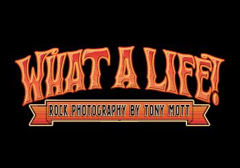 What a Life! Tony Mott Q&A